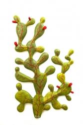 La chunguera y su fruto el hijo chungo